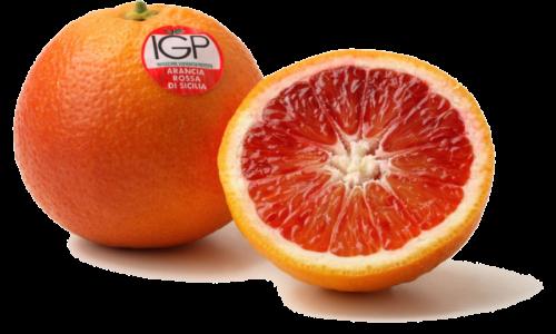 Campisi_Citrus_arancia_rossa_sicilia-IGP-01
