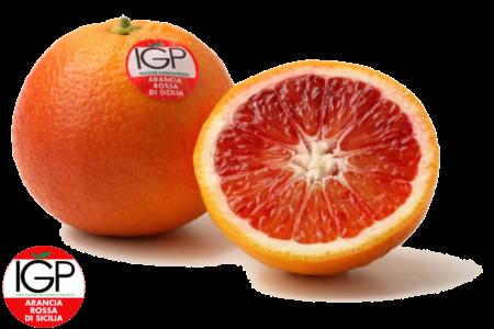 Campisi_Citrus_arancia_rossa_sicilia-IGP-logo